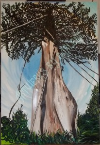 The Tree of Life - The Amazon
